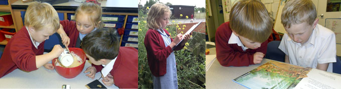 Children Learning at Tibberton School